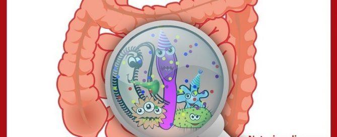 parasite treatment