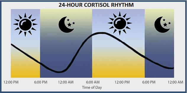 saliva cortisol test